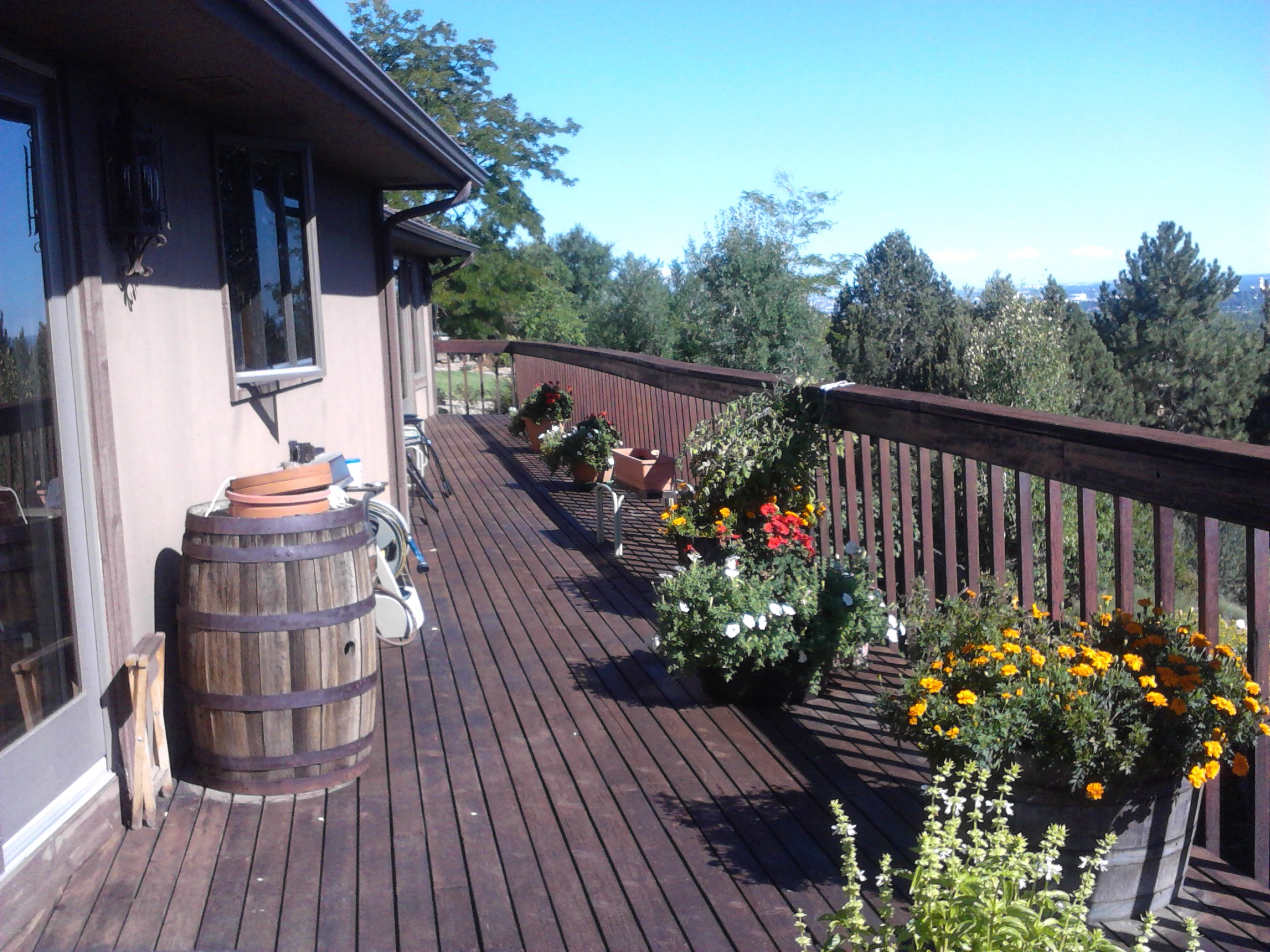 Deck, Fences, Patios or Porch Clean and Seal